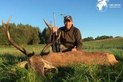 Hjortejagt Polen Globus Jagtrejser