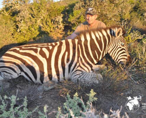 Jagt Sydafrika Globus Jagtrejser